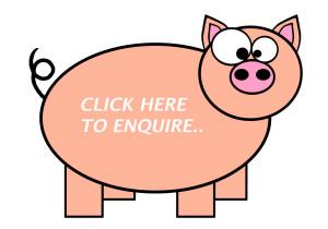 Enquiry Form - Hog Roast Redditch